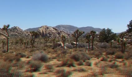 lost-horse-ranger-station-3da-1080p-dscf4807