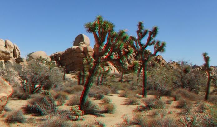 lost-horse-ranger-station-3da-1080p-dscf4866