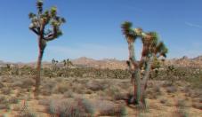 lost-horse-ranger-station-3da-1080p-dscf4873