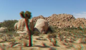 lost-mule-wall-joshua-tree-np-3da-1080p-dscf5767