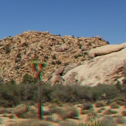 lost-mule-wall-joshua-tree-np-3da-1080p-dscf5780