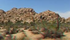 lost-mule-wall-joshua-tree-np-3da-1080p-dscf5788