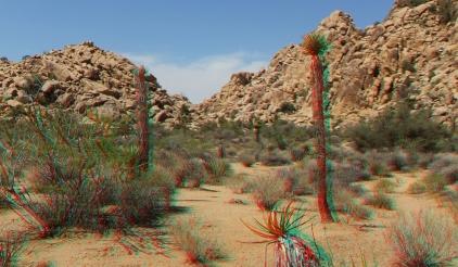 lost-mule-wall-joshua-tree-np-3da-1080p-dscf5789