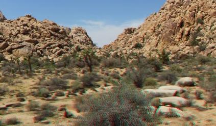 lost-mule-wall-joshua-tree-np-3da-1080p-dscf5802
