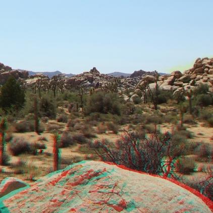 lost-mule-wall-joshua-tree-np-3da-1080p-dscf5803