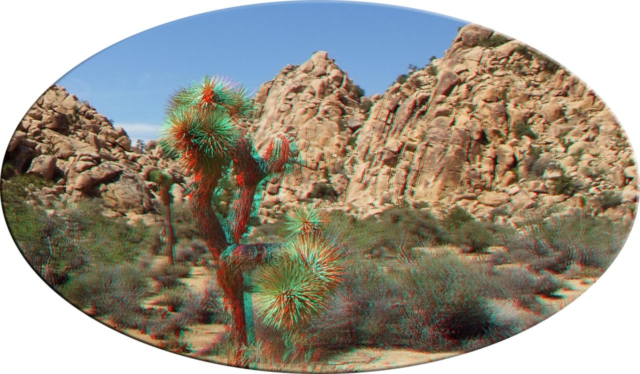 lost-mule-wall-joshua-tree-np-3da-1080p-dscf5866a