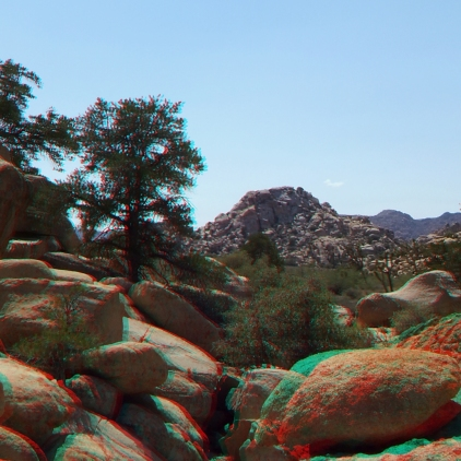 lost-mule-wall-joshua-tree-np-3da-1080p-dscf5875