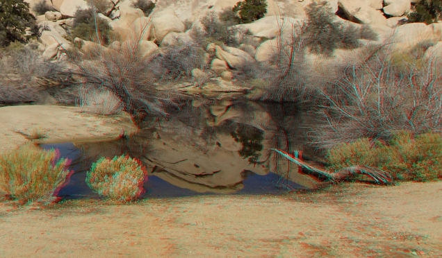 barker-dam-joshua-tree-3da-1080p-dscf5290