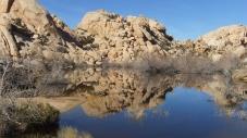barker-dam-joshua-tree-dscf5284