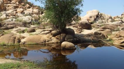 barker-dam-joshua-tree-np-dscf5588