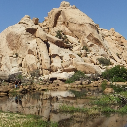 barker-dam-joshua-tree-np-dscf5589
