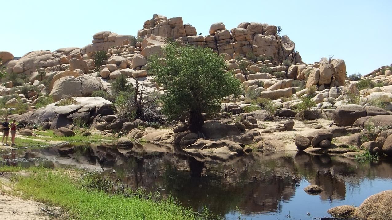 barker-dam-joshua-tree-np-dscf5594
