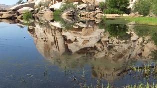 barker-dam-joshua-tree-np-dscf5616
