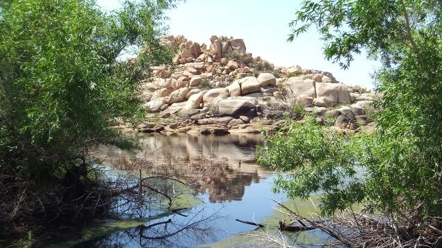 barker-dam-joshua-tree-np-dscf5623
