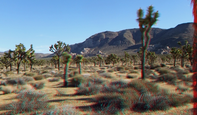 lost-horse-valley-joshua-tree-np-3da-1080p-dscf0482