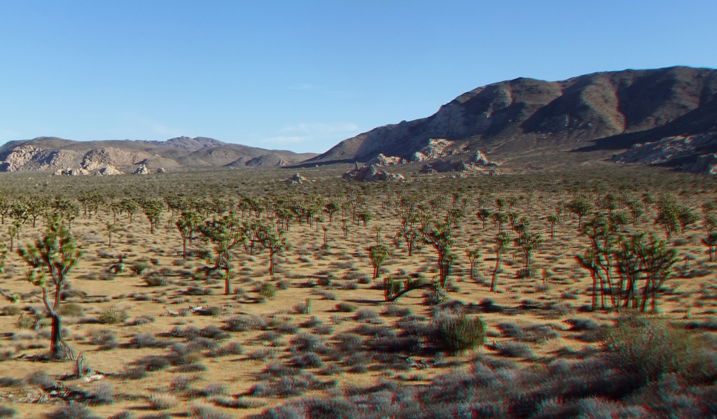 lost-horse-valley-joshua-tree-np-3da-1080p-dscf0484