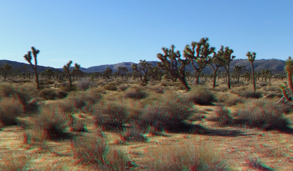 lost-horse-valley-joshua-tree-np-3da-1080p-dscf0549