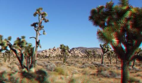 lost-horse-valley-joshua-tree-np-3da-1080p-dscf8490