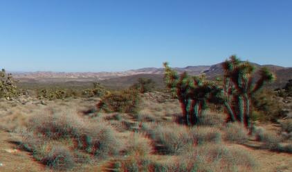 lost-horse-valley-joshua-tree-np-3da-1080p-dscf8524