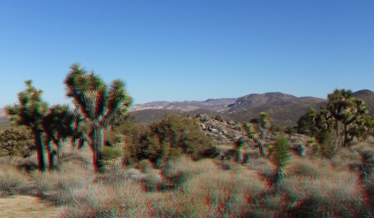 lost-horse-valley-joshua-tree-np-3da-1080p-dscf8525