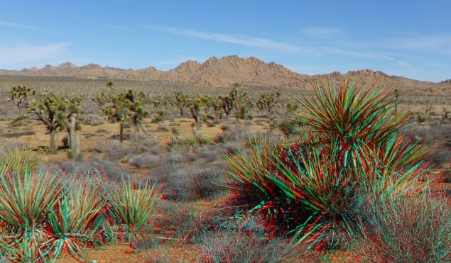 quail-springs-area-joshua-tree-3da-1080p-dscf5276
