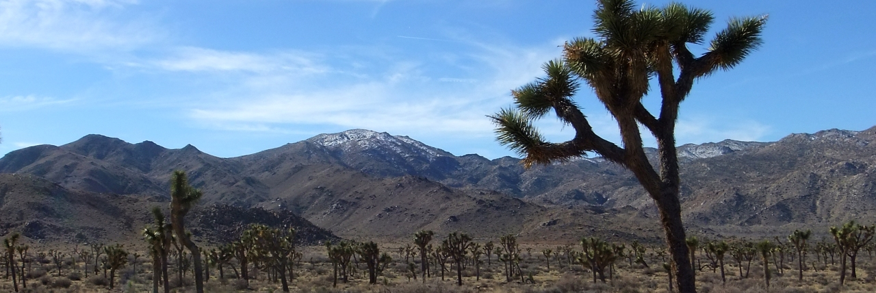 Quail Mountain (5813ft)