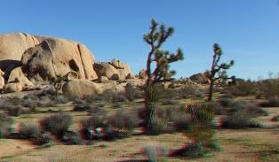 Campground Joshua Tree NP 1080p 3DA DSCF5744