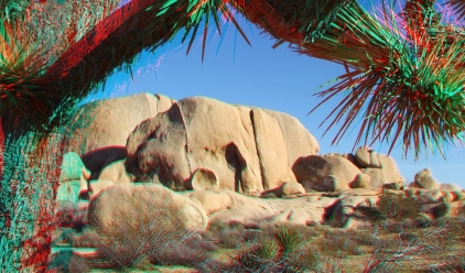 Campground Joshua Tree NP 1080p 3DA DSCF5749