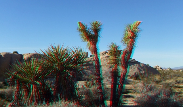 Campground Joshua Tree NP 1080p 3DA DSCF5785