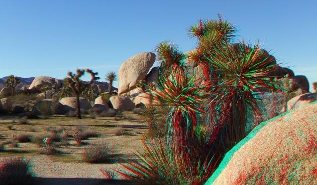Campground Joshua Tree NP 1080p 3DA DSCF5793