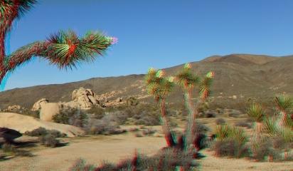Campground Joshua Tree NP 1080p 3DA DSCF5798