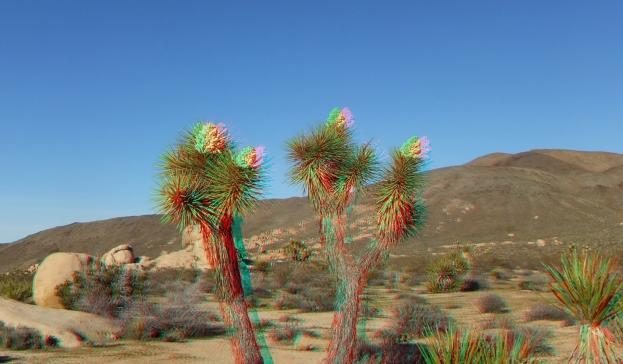 Campground Joshua Tree NP 1080p 3DA DSCF5799