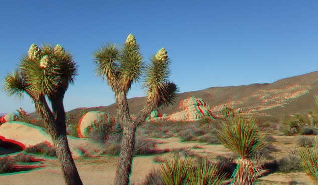Campground Joshua Tree NP 1080p 3DA DSCF5801
