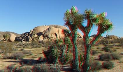 Campground Joshua Tree NP 1080p 3DA DSCF5811