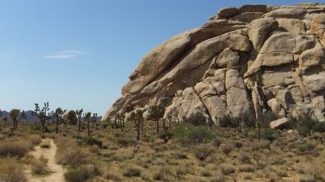 echo-rock-area-joshua-tree-np-dscf5414