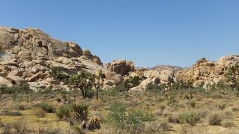 echo-rock-area-joshua-tree-np-dscf5431