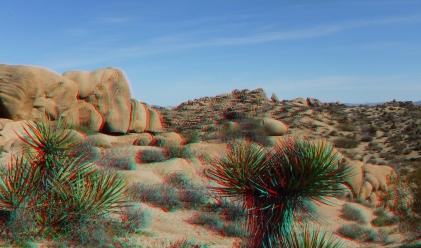 Jumbo Rocks Corridor 1080p 3DA DSCF5595