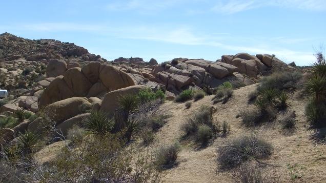 Jumbo Rocks Corridor Joshua Tree NP DSCF5599