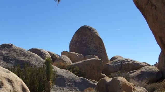 Planet X boulders Joshua Tree NP DSCF7211