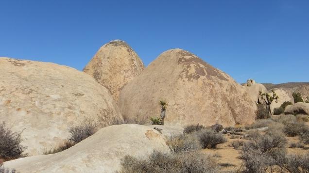 Planet X boulders Joshua Tree NP DSCF7261