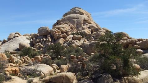 Steve Canyon Blob Boulders DSCF5415