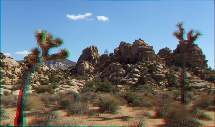 Steve Canyon Joshua Tree NP 1080p 3DA DSCF2848
