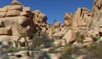 Steve Canyon Joshua Tree NP 1080p 3DA DSCF5381
