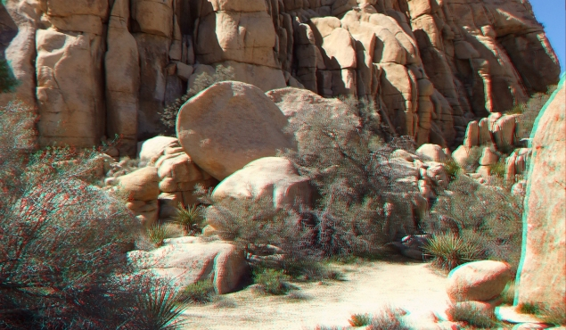 Steve Canyon Joshua Tree NP 1080p 3DA DSCF5406