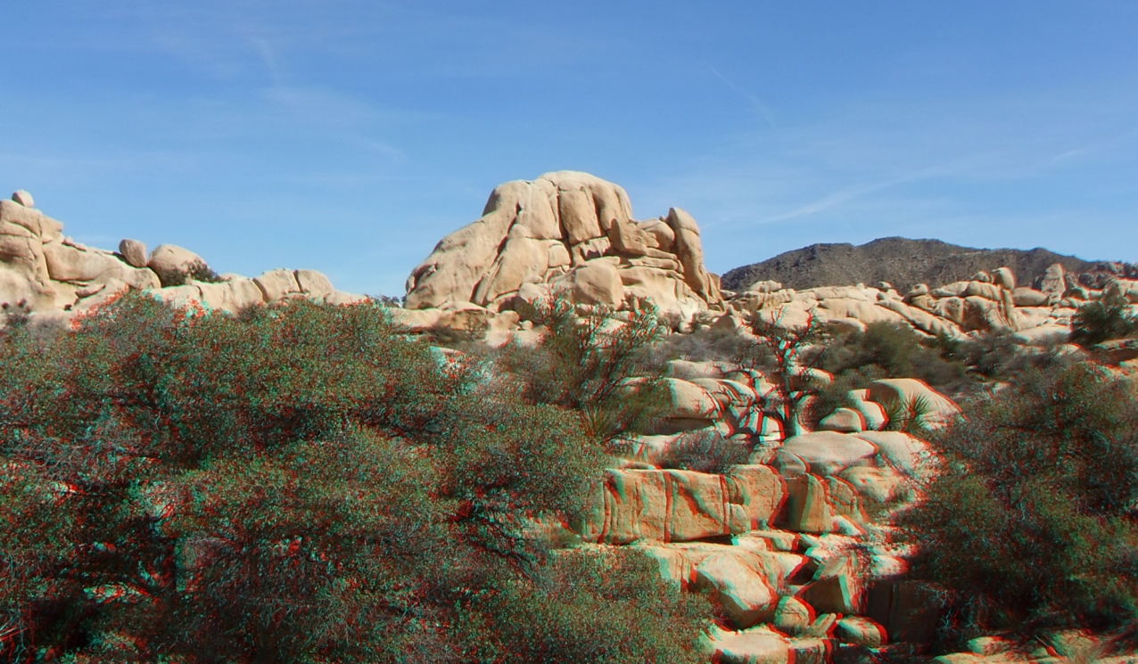 Steve Canyon Joshua Tree NP 1080p 3DA DSCF5413