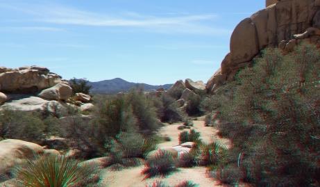 Steve Canyon Joshua Tree NP 1080p 3DA DSCF5416