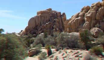 Steve Canyon Joshua Tree NP 1080p 3DA DSCF5419