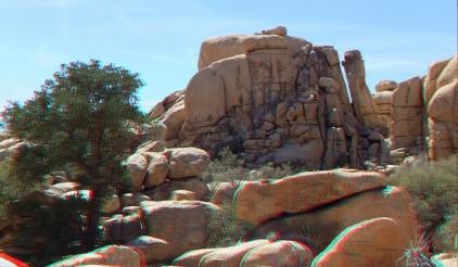 Steve Canyon Joshua Tree NP 1080p 3DA DSCF5522