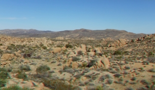 Zebra Cliffs Joshua Tree NP 1080p 3DA DSCF5679