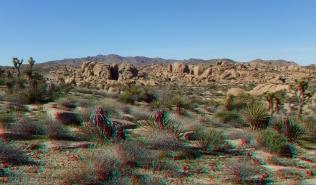 Zebra Cliffs Joshua Tree NP 1080p 3DA DSCF5682